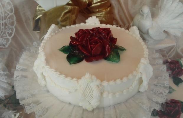 Kuchen und Torten - Für die schönsten Momente